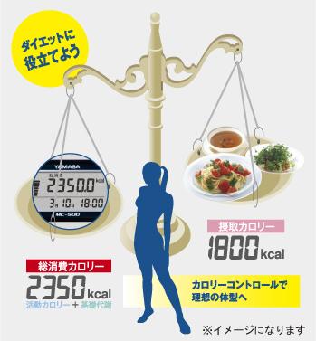 1日の総消費カロリーを知ろう